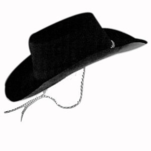 Hat Cowboy Flocked Black Ea 504638a27014