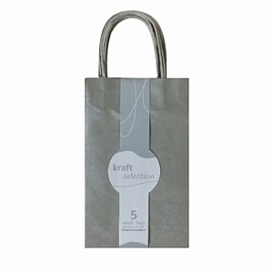 Gift boxes and bags lombard gift bags small silver pk 5 negle Choice Image